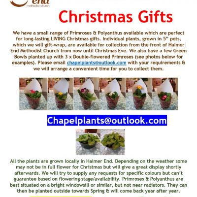 Christmas Plants Flyer_201208