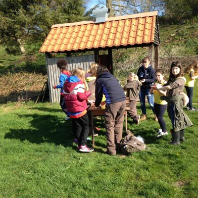 Guides and Brownies at Maer_2_190425