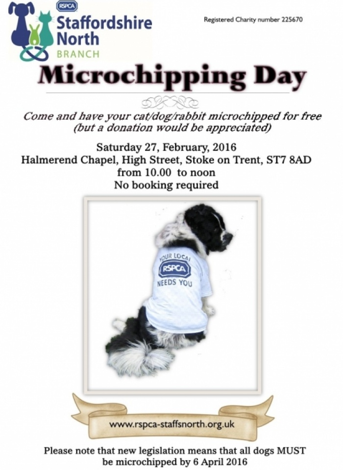 Microchipping Day Halmer End 27-02-16