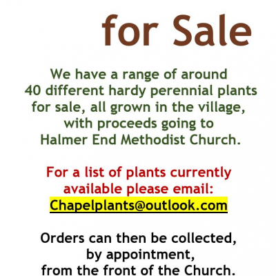 Plants for Sale v3