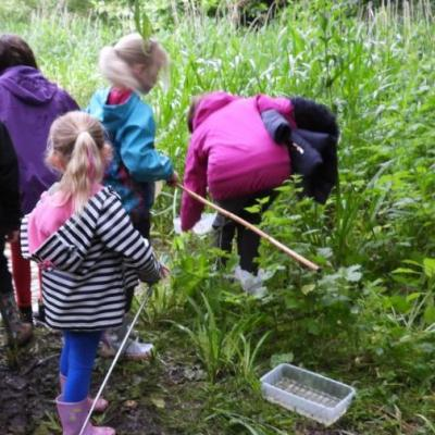 Pond dipping 19 getting ready