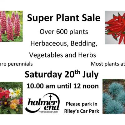 Super Plant Sale_20th July 2019_B_190709-docx_page_001_page_001